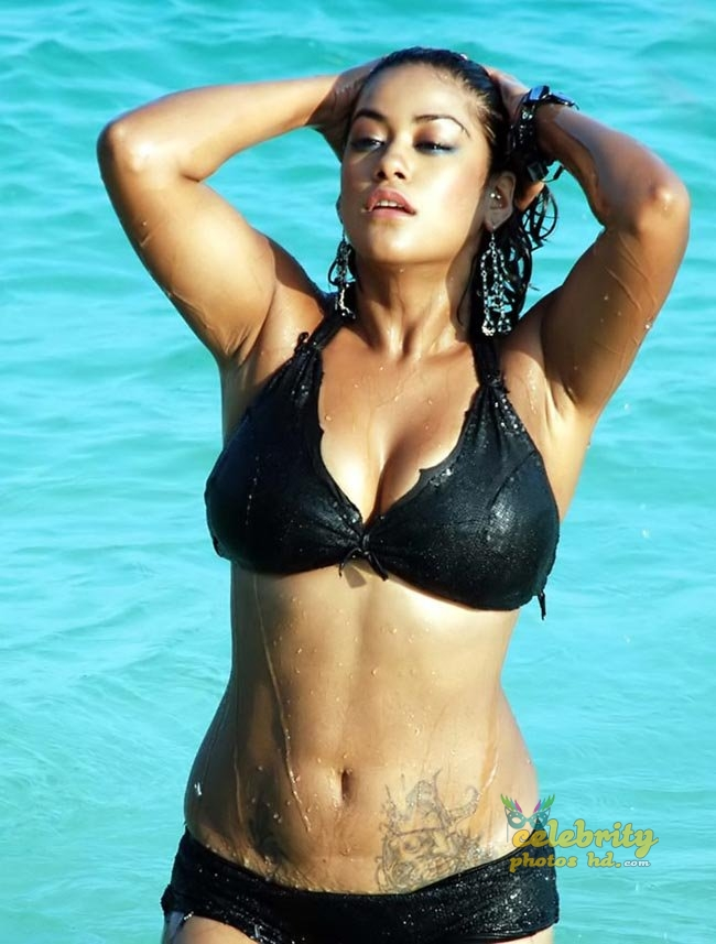 Telugu film actress Mumaith Khan Hot Photos (10)
