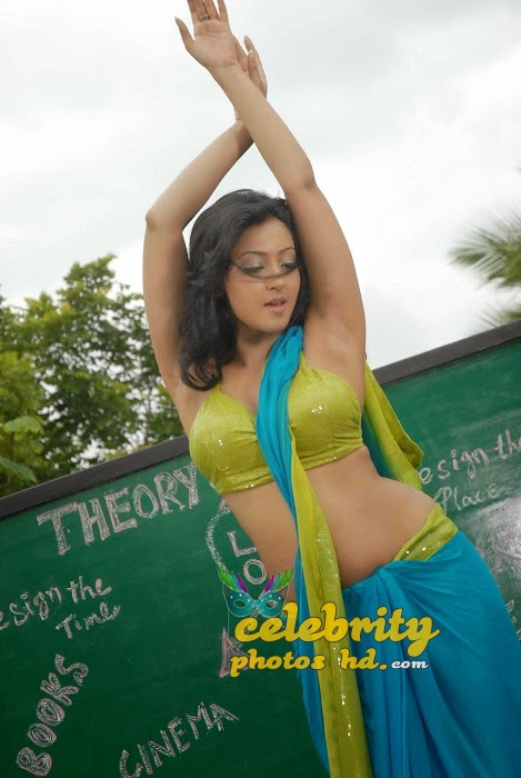 Tollywood heroine Aindrita Ray New Spicy Stills (3)