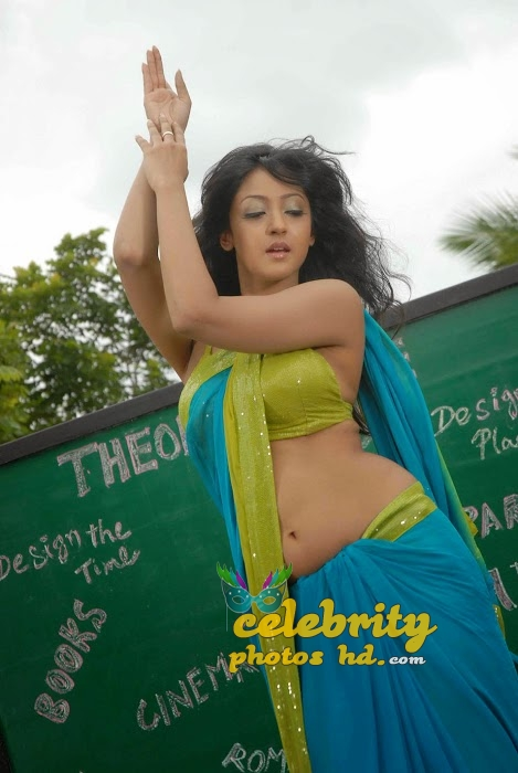 Tollywood heroine Aindrita Ray New Spicy Stills (4)