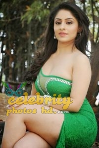 Ankita Sharma Spicy Hot Photos (6)