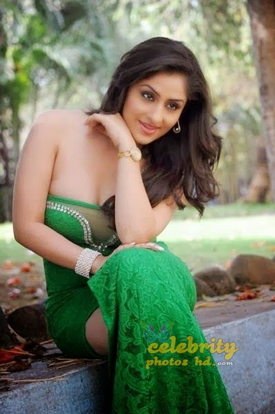 Ankita Sharma Spicy Hot Photos (7)