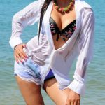 Exclusive Indian Hot Actress, Model Photos