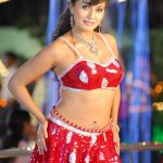 Hottest South Indian Glamour Shagupta Jareen Photos