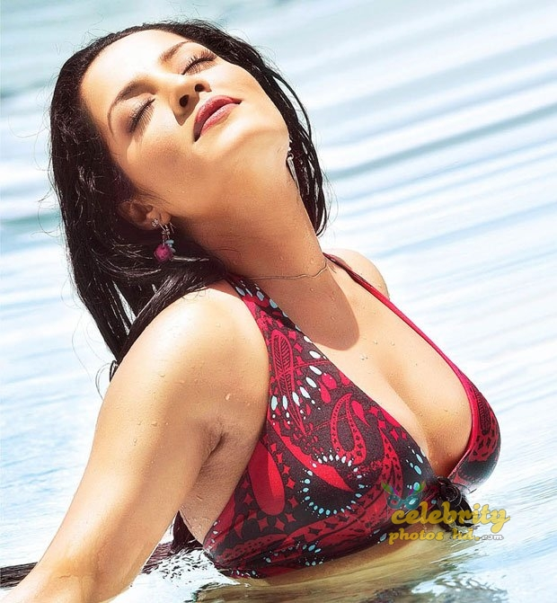 Hot actress Celina Jaitly (1)
