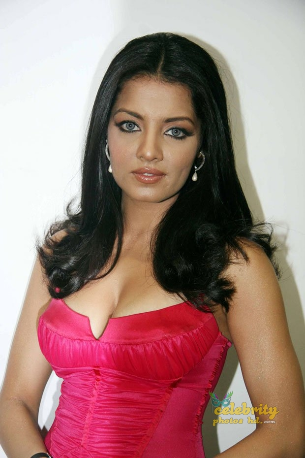 Hot actress Celina Jaitly (12)