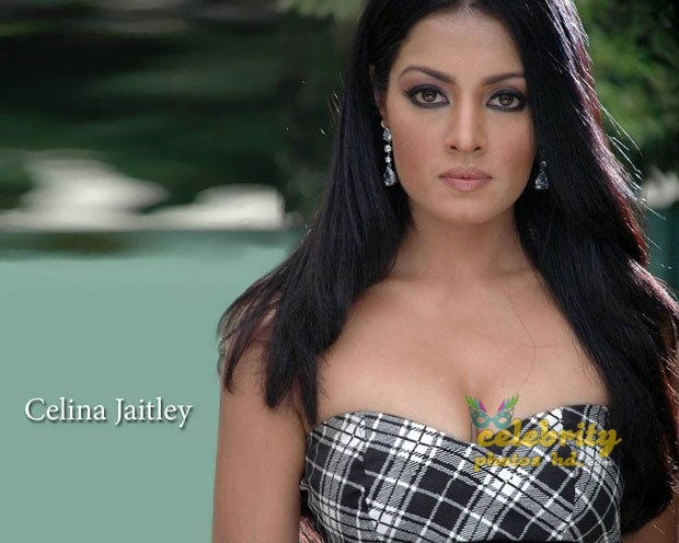 Hot actress Celina Jaitly (4)
