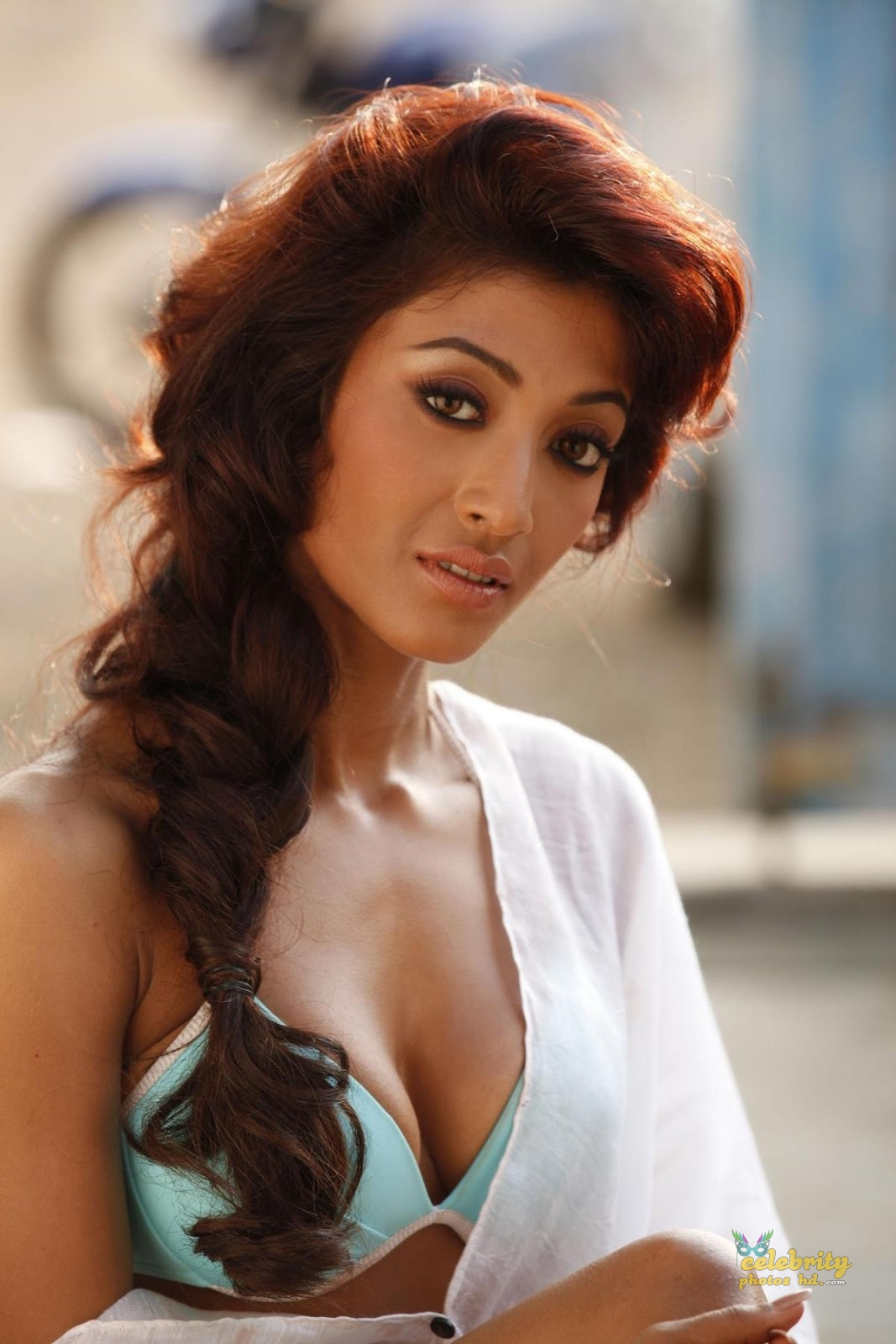Kolkata Super Hot Actress Paoli Dam (11)