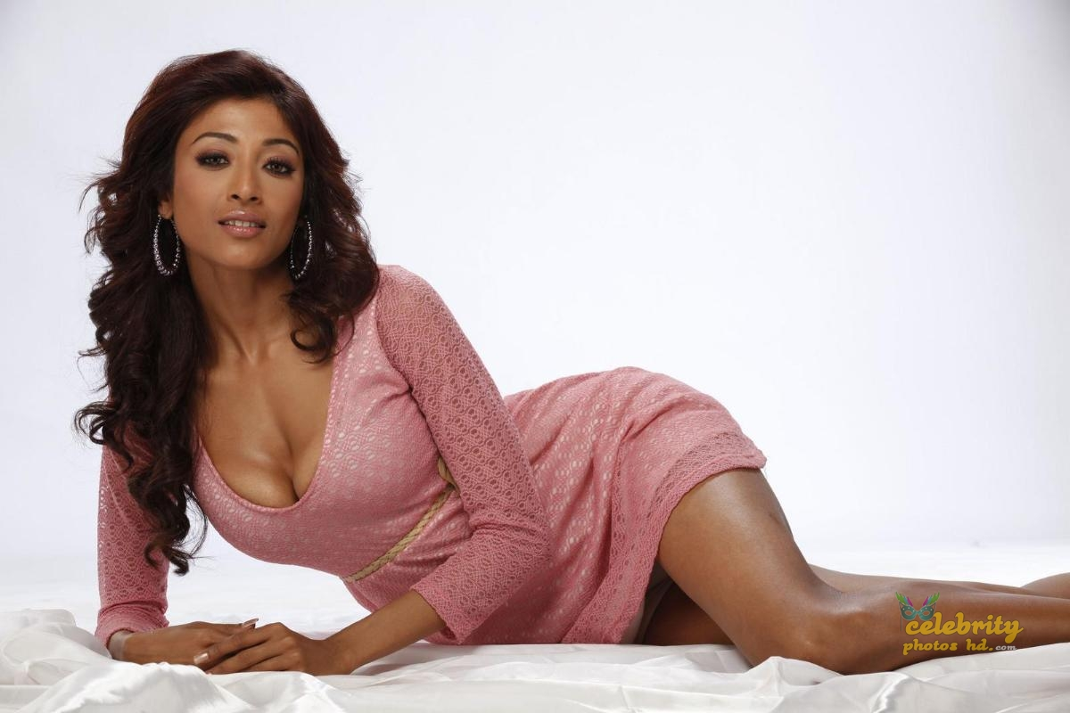 Kolkata Super Hot Actress Paoli Dam (3)