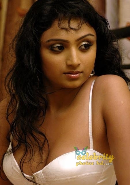 South Indian Hot Actress (1)