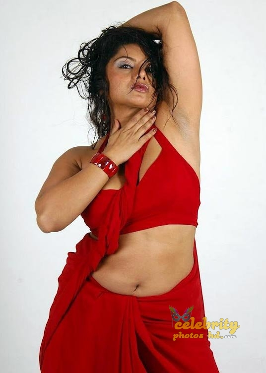South Indian Super Hot Actress Swathi Varma (1)