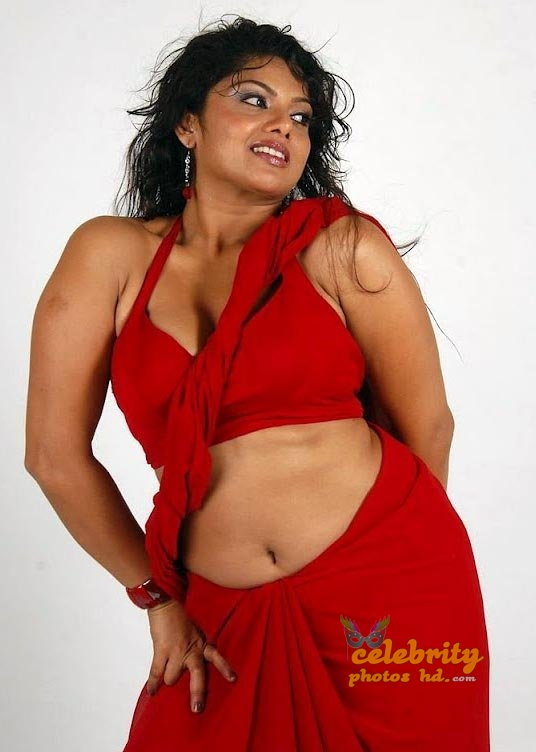 South Indian Super Hot Actress Swathi Varma (3)