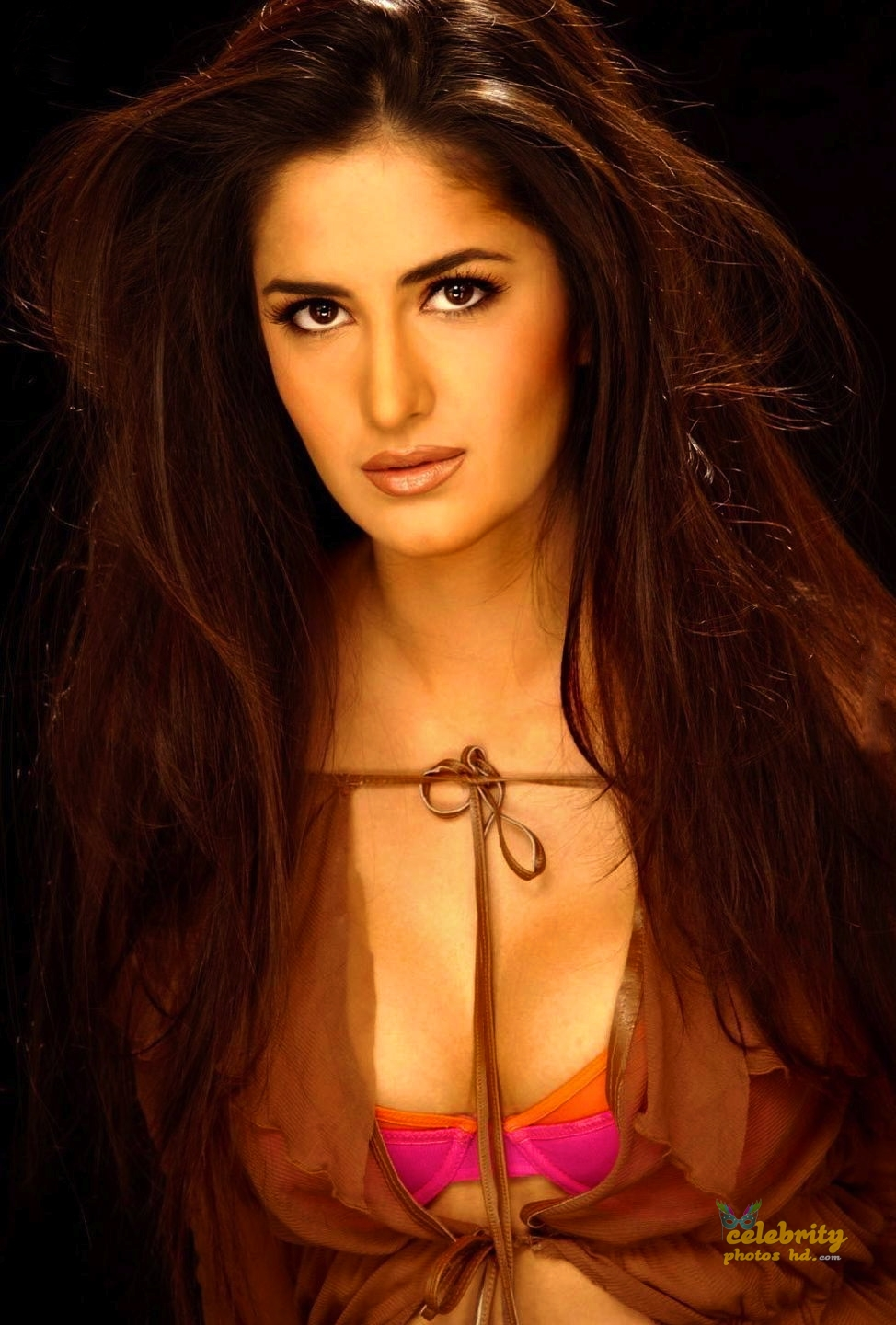 Bollywood Special Hot Actress Katrina Kaif Photo (4)