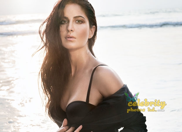 Bollywood Special Hot Actress Katrina Kaif Photo (5)