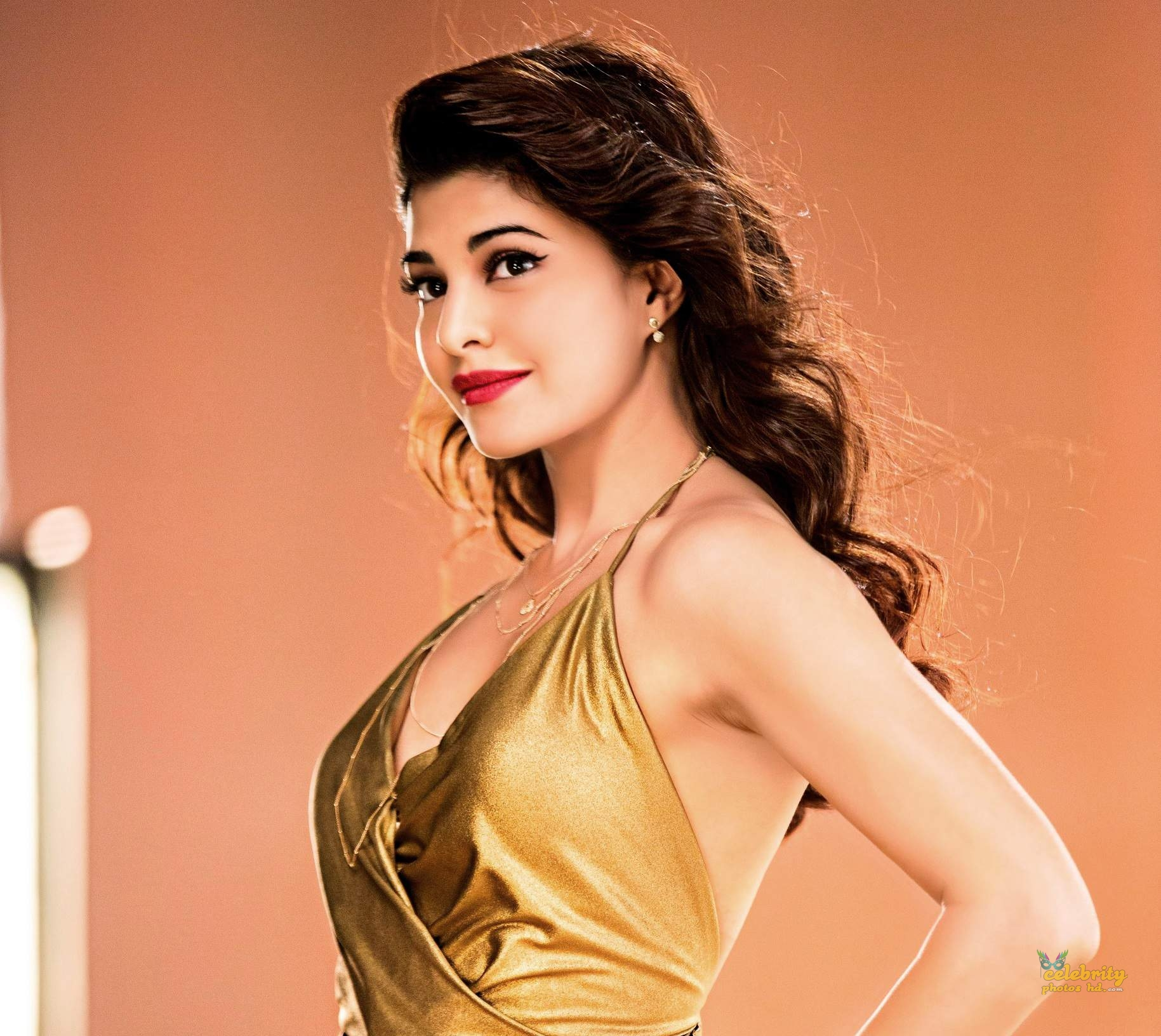 Bollywood Spicy Actress Jacqueline-Fernandez (4)