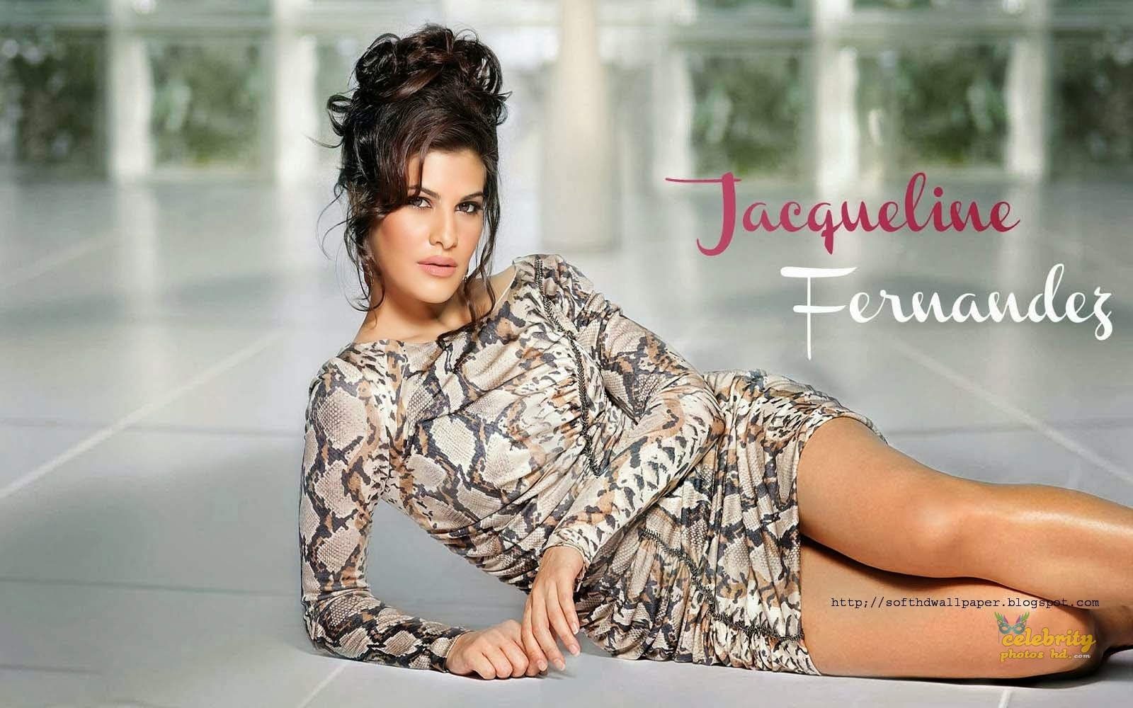 Bollywood Spicy Actress Jacqueline-Fernandez (7)