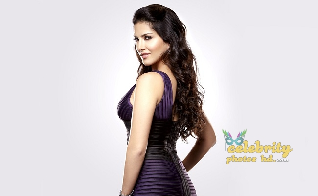 Bollywood Super Hot Model, Actress Sunny Leone Photo (4)