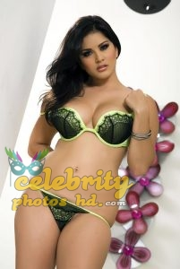 Bollywood Super Hot Model, Actress Sunny Leone Photo (5)