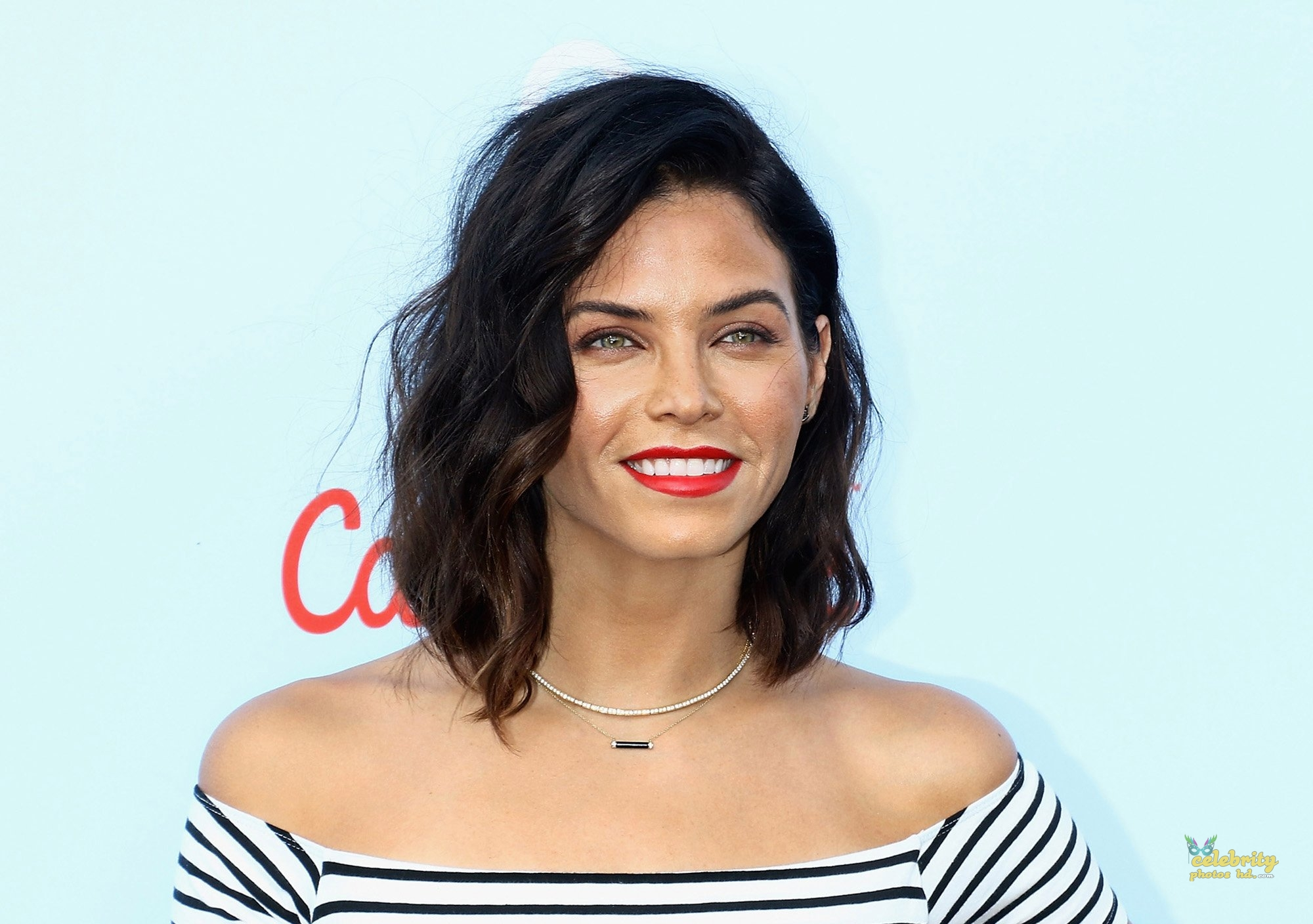 Hollwood Actress Jenna Dewan (1)