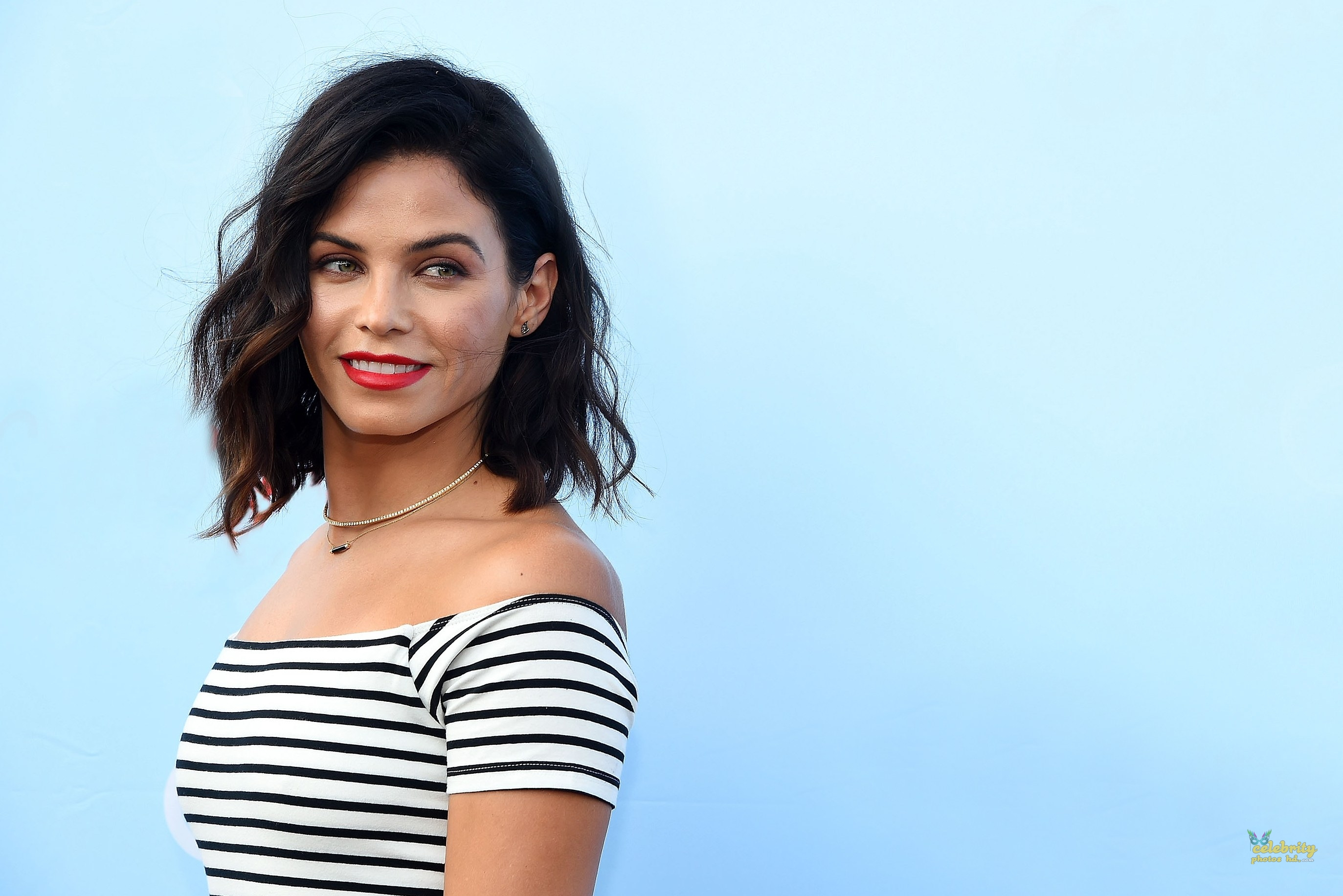 Hollwood Actress Jenna Dewan (4)