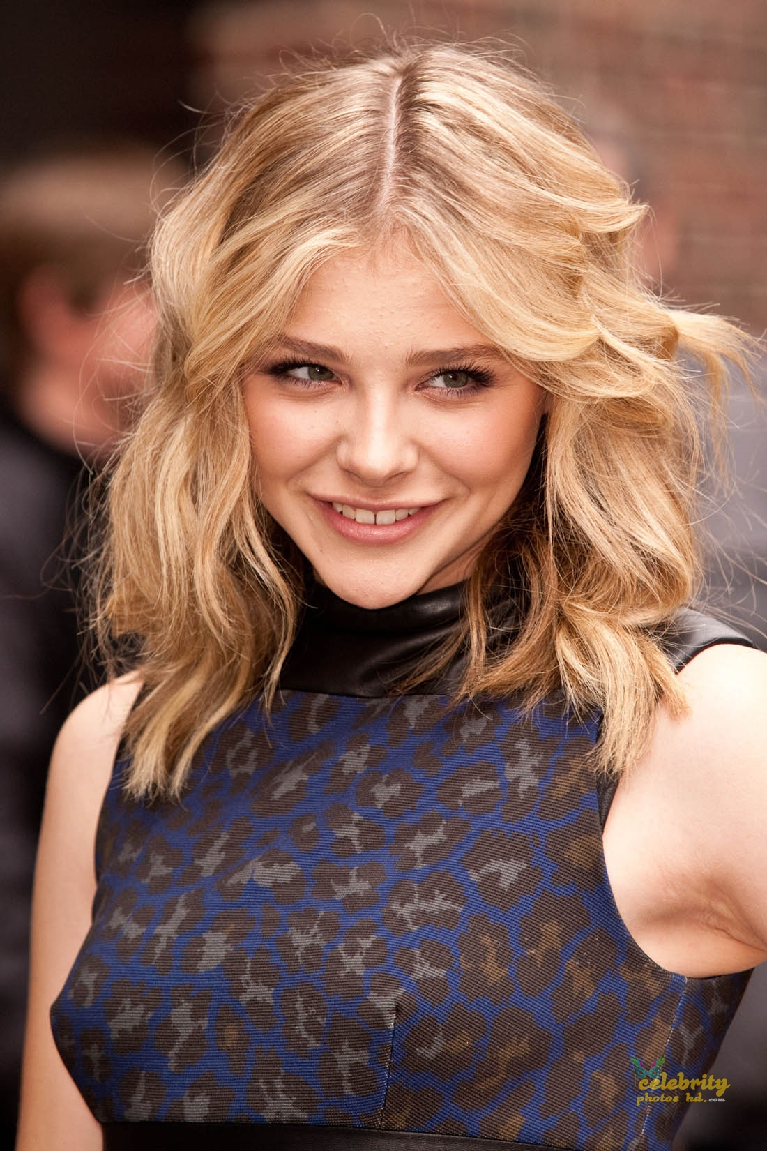 Hollywood Unseen Spicy Actress Chloe Moretz (2)