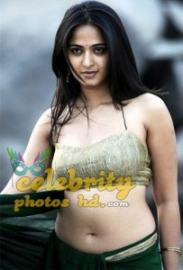 Hottes Actress Anushka Shetty (1)