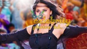 Hottest Actress Anushka Shetty (6)