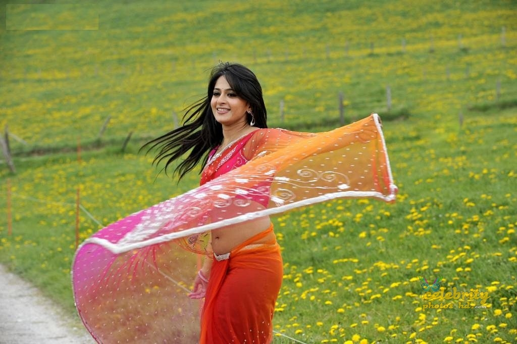 Hottest Actress Anushka Shetty (9)