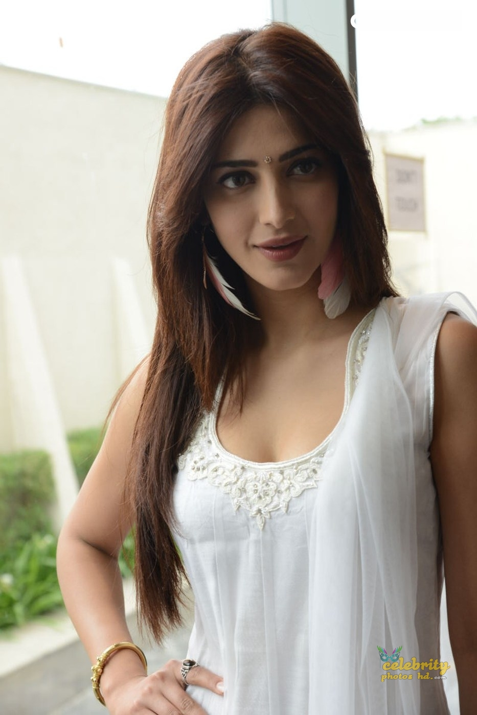 Indian Spicy Hot Actress Shruti Haasan New Photo's (2)