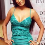 Indian Super Hot Actress Poonam Pandey Photo's