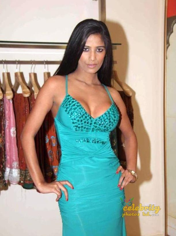 Indian Super Hot Actress Poonam Pandey (2)