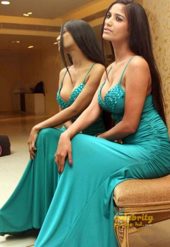 Indian Super Hot Actress Poonam Pandey (3)