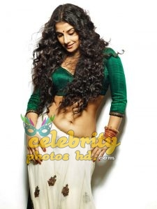 Indian Super Hot Vidya Balan (4)