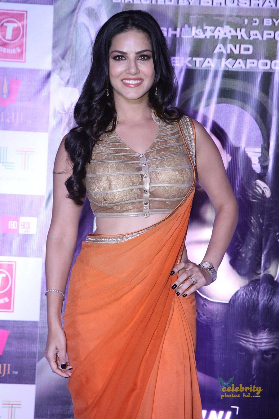 Indian Top Hot Actress Sunny Leone (5)