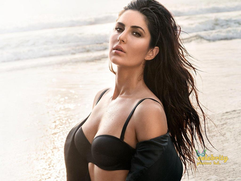 Indian Super Hottest Spicy Actress Katrina Kaif New Photo (2)