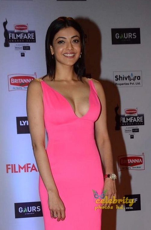 South Indian Hottest Actress Kaja Agarwal (8)