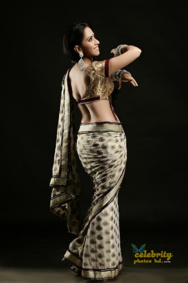 South Indian Hottest Model Monali Sehgal (4)