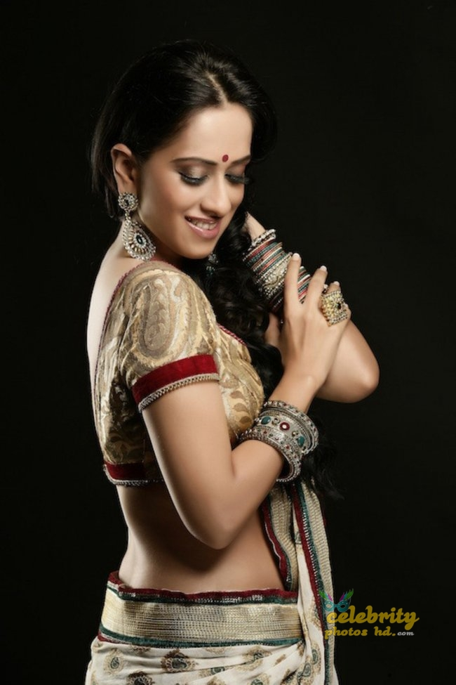 South Indian Hottest Model Monali Sehgal (5)