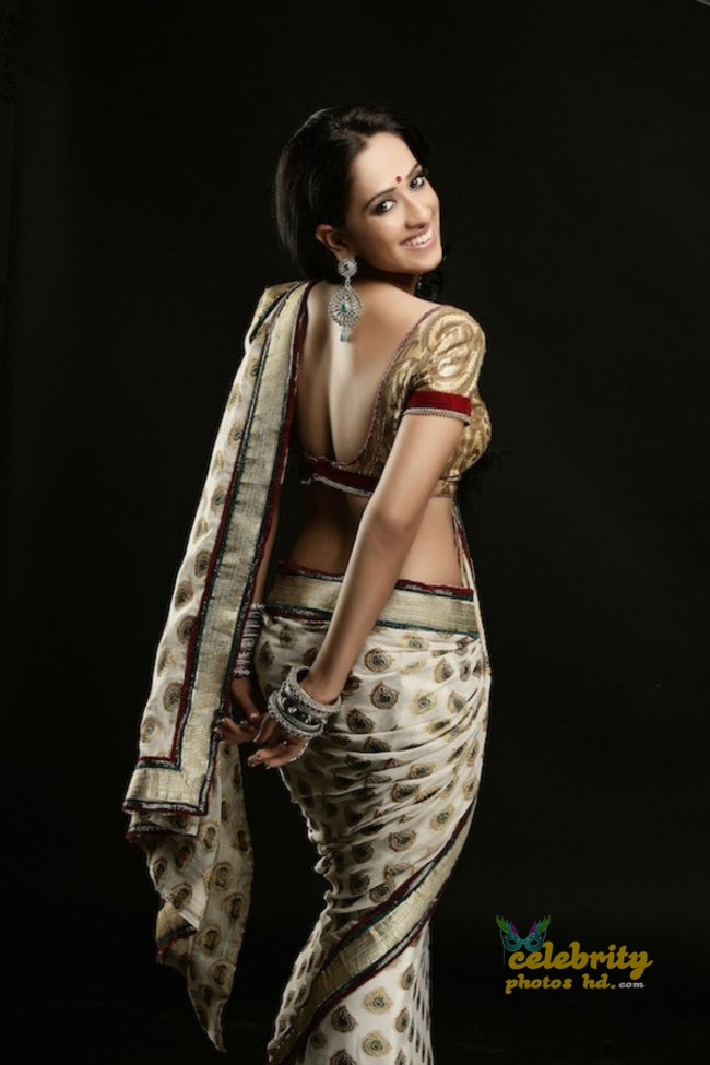 South Indian Hottest Model Monali Sehgal (6)