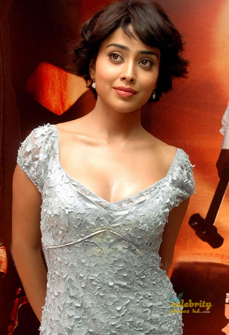 South Indian Super Actress Shriya Saran (1)