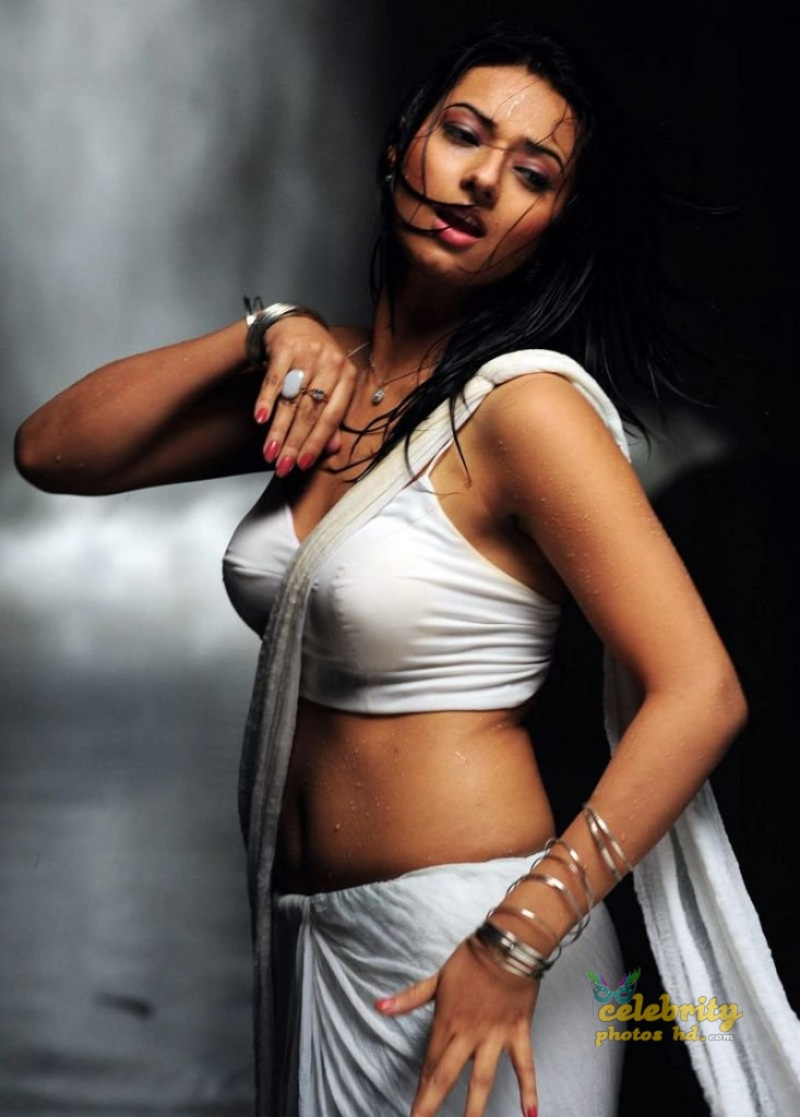 South Indian Super Hot Actress Isha Chawla (1)