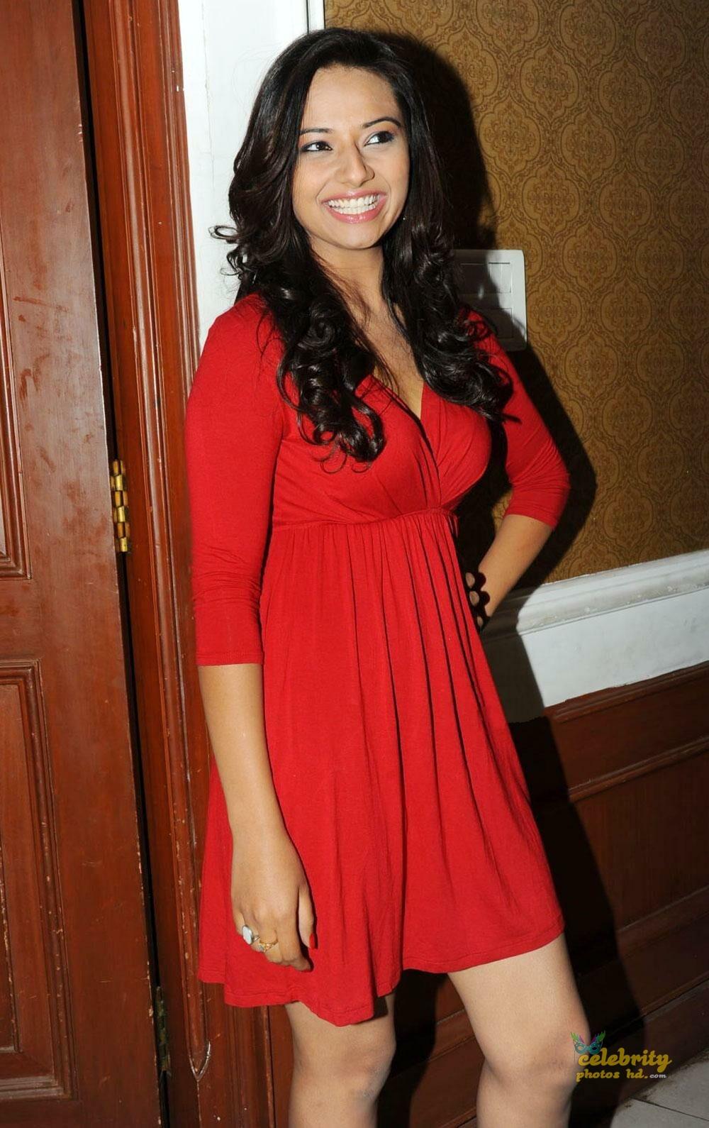 South Indian Super Hot Actress Isha Chawla Photo (1)
