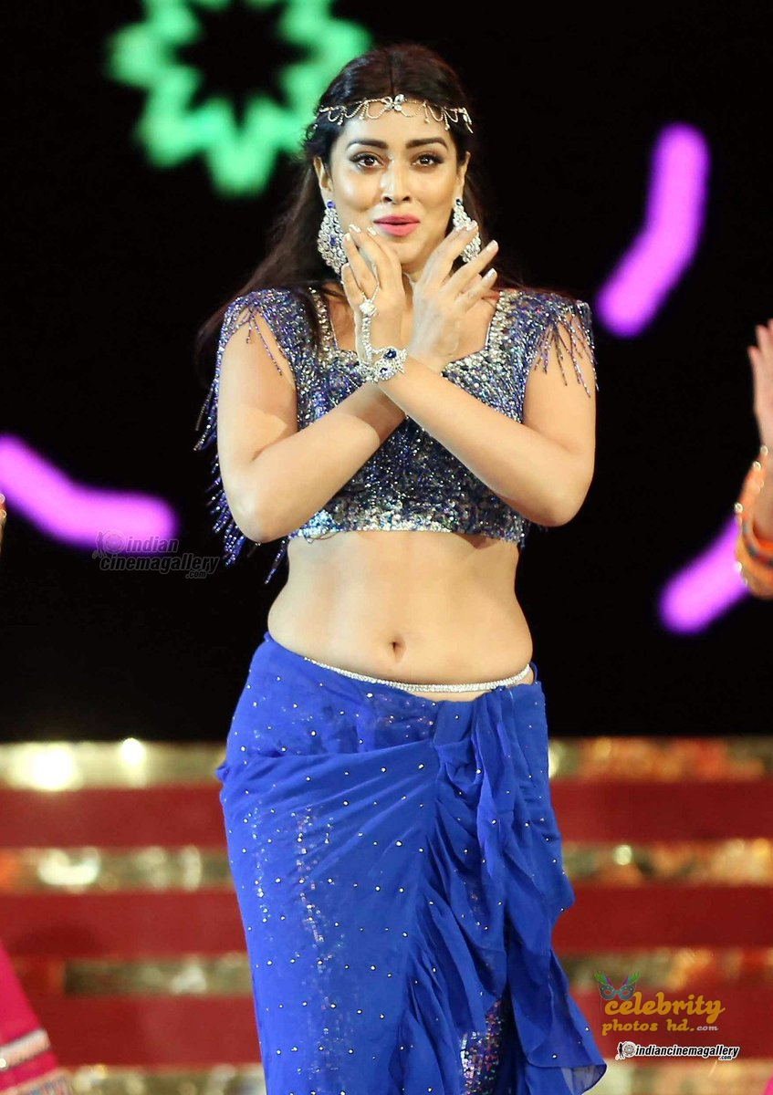 South Indian Super Spicy Hot Actress Shriya Saran (4)