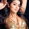South Indian Super hottest Actress Shriya Saran (1)