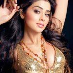 Hottest South Indian Super Actress Shriya Saran Photo's