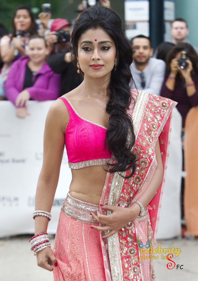 South Indian Super hottest Actress Shriya Saran (2)