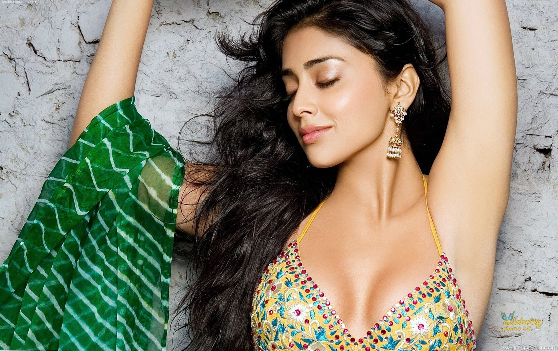 South Indian Super hottest Actress Shriya Saran (4)