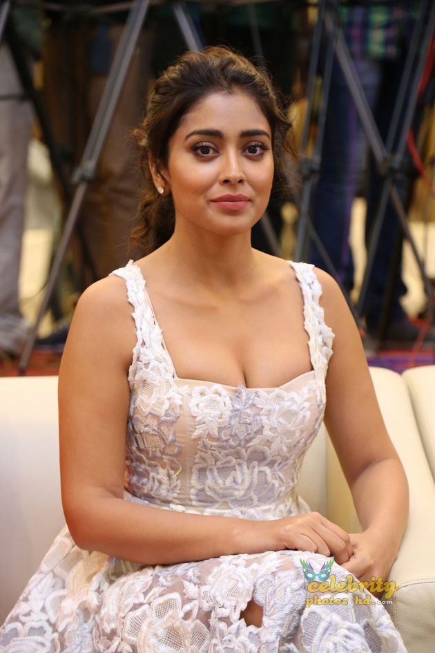 South Indian Super hottest Actress Shriya Saran (6)