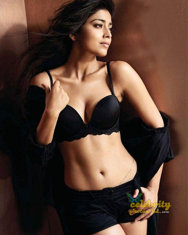 South Indian Super hottest Actress Shriya Saran (7)