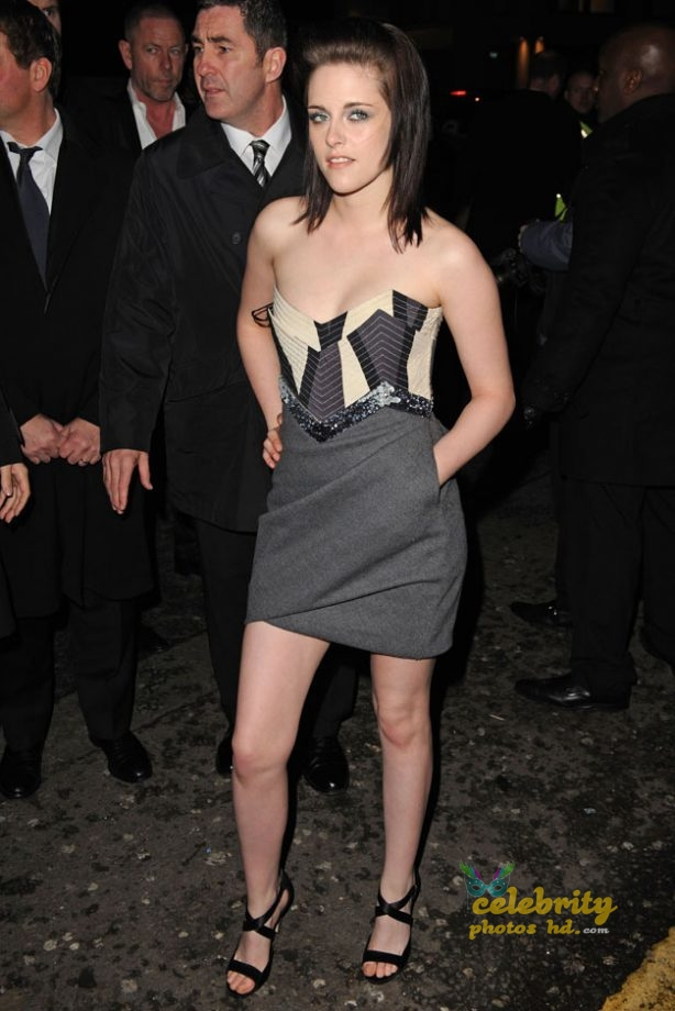 Unseen Actress Kristen Stewart New Spicy Photo (3)
