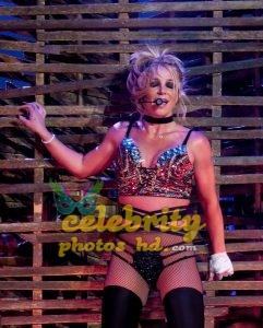 Exclusive Actress Britney Spears Hot Bikini Photo (4)
